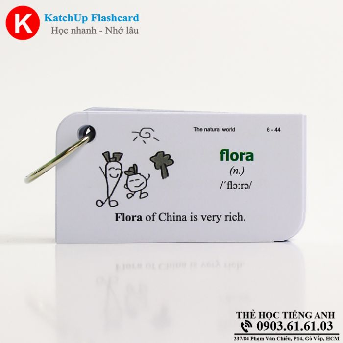 Flashcard-KatchUp-The-natural-world-High-Quality-Trang