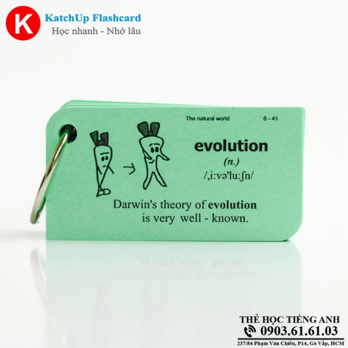 Flashcard-KatchUp-The-natural-world-High-Quality-Xanh