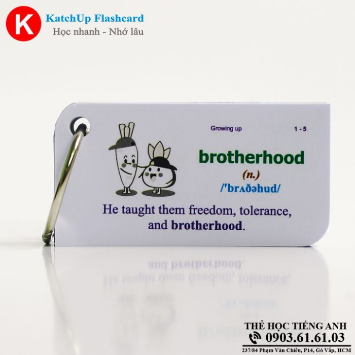 KatchUp Flashcard -  Growing up  - Best Quality (06B)