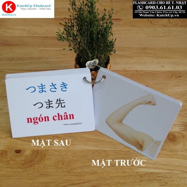Flashcard-cho-be-tien-nhat-baby-co-the-truoc-sau