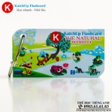 flashcard-katchup-the-natural-world-high-quality-trang-14t