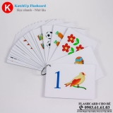 bo-katchup-flashcard-cho-be-tieng-anh-con-so-high-quality