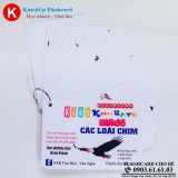 bo-katchup-flashcard-cho-be-tieng-anh-cac-loai-chim-high-quality